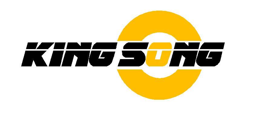 Shenzhen King Song Sports Equipment Co., Ltd.