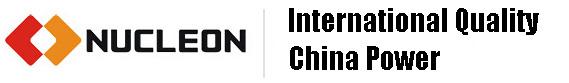 China Nucleon Crane Group