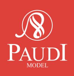 Guangzhou Paudimodel Technology Co., Ltd.