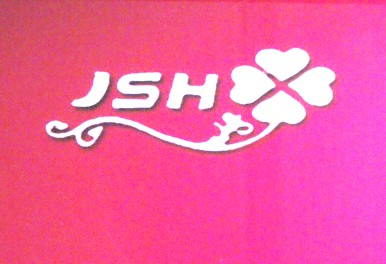 Yiwu JSH jewelry Factory