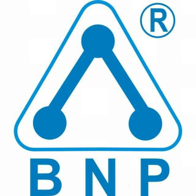 BNP Ozone Technology Co., Ltd