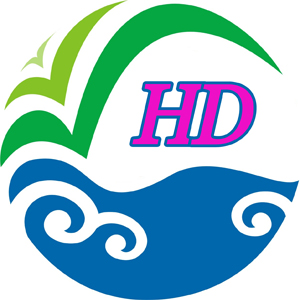 Liaocheng Haidi Import And Export Co., Ltd