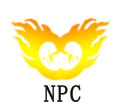 NPC Toner Chip