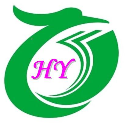 Anping Haoyi Wire Mesh Co., Ltd