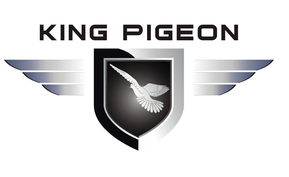 King Pigeon Hi-Tech.Co.,Ltd