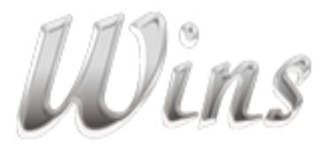 Wins Industrial Ltd.