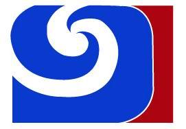 CGI Group Co., Ltd.