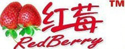 Redberry Industrial Limited