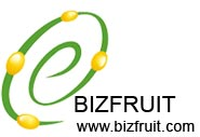 Xinjiang Special Forestry Fruit E-Commerce Co Ltd
