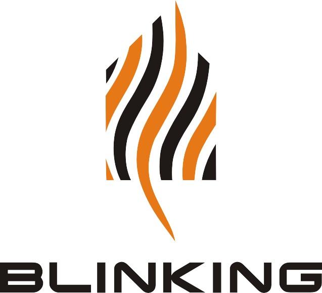 Shenzhen Blinking Technology Co., Ltd