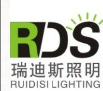 Ruidisi Lighting (HK) Co.,Ltd.