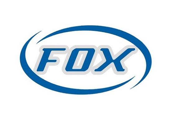 Fox Technology Co., Ltd.