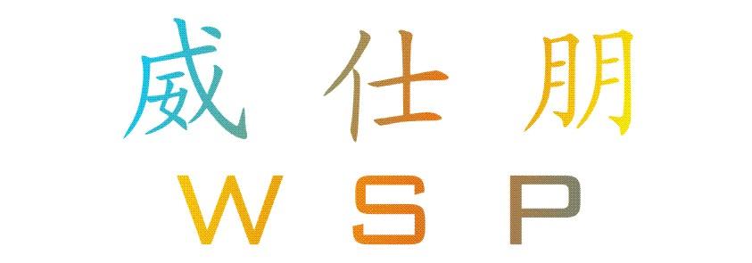 HK WSP Electronic Co.,Ltd