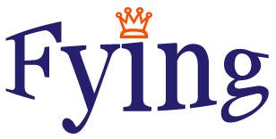 Fying Electronic Co.,Ltd