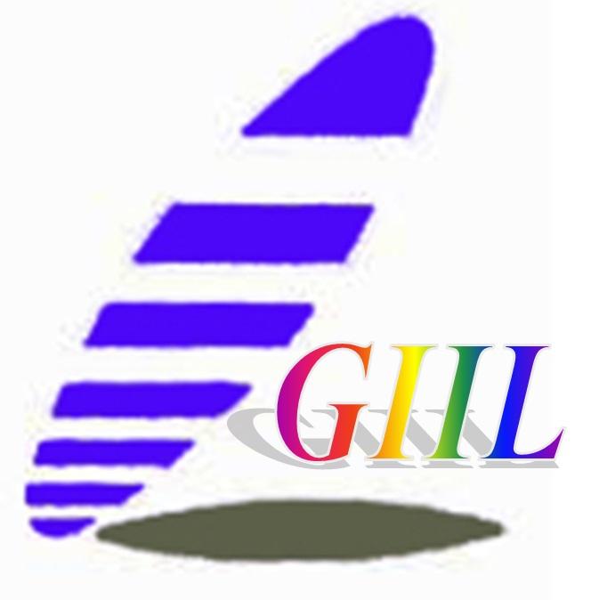 Group International Industrial Ltd.