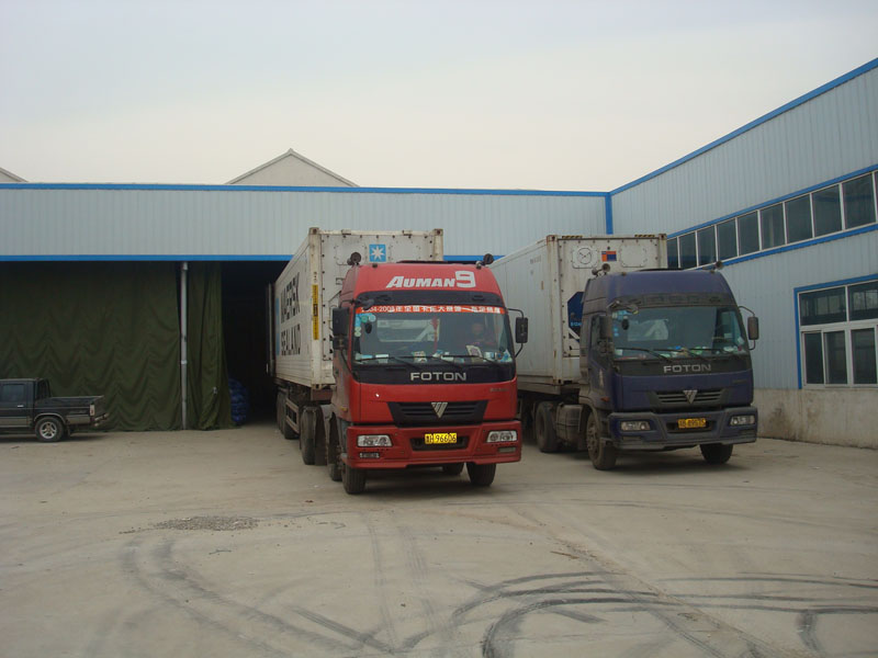 Jining Eversgarlic Trading Co., Ltd