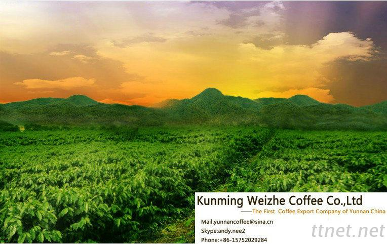 Yunnan Weizhe Coffee Co.,Ltd