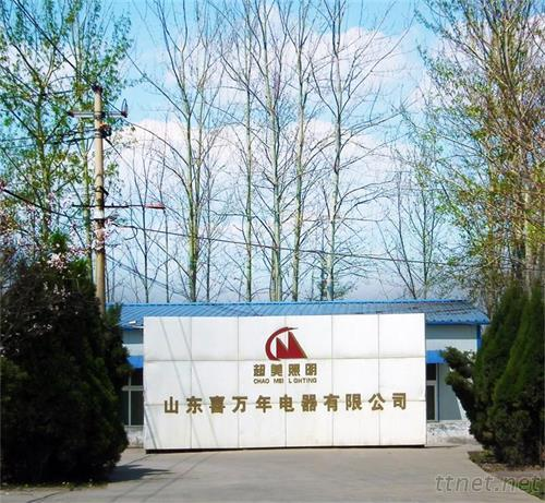 Shandong Xiwannian Electrical Co., Ltd.