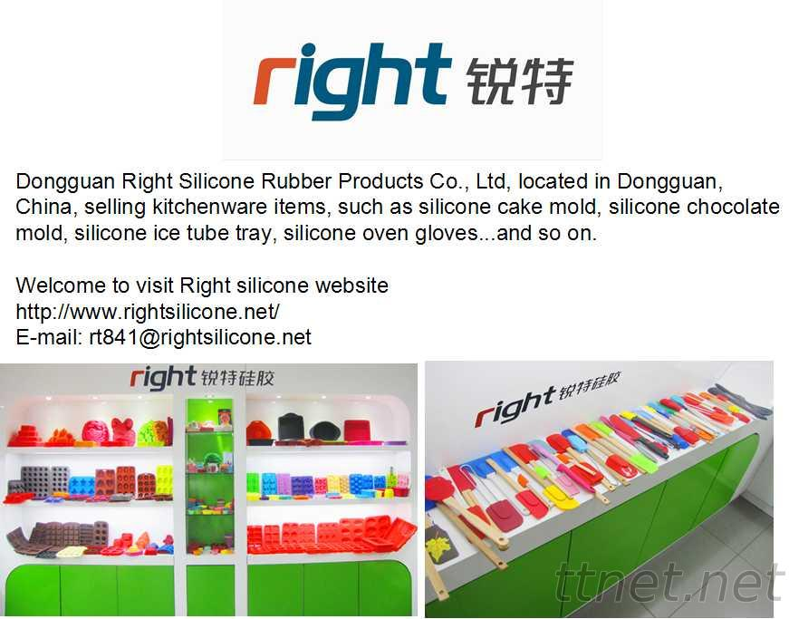 Dongguan Right Silicone Rubber Products Co., Ltd.