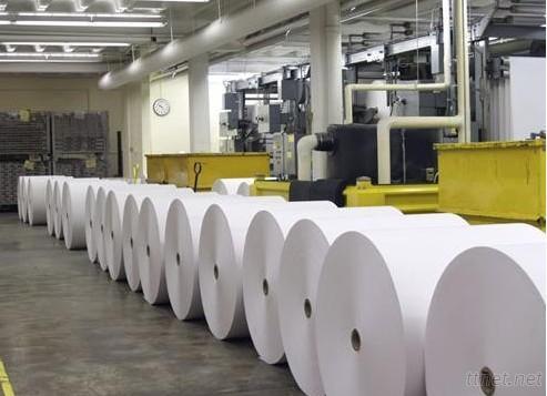 Shandong Jining Greenforest Paper Co., Ltd