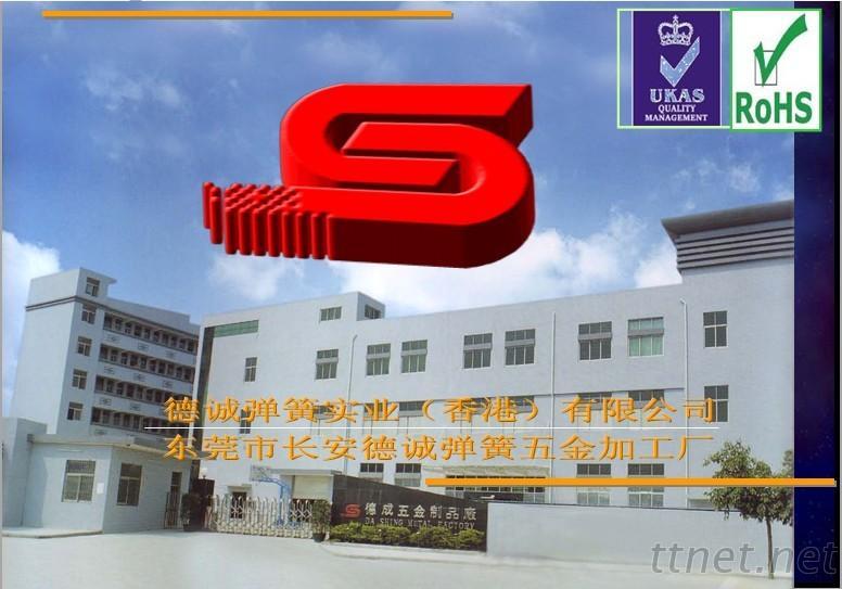 Dongguan Dashing Spring CO,Ltd