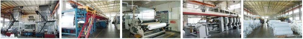 Shanghai Chiswear Industry Co., Ltd.