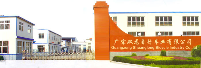 Hebei Shuanglong Bicycle Industry Co., Ltd