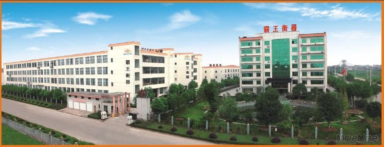 Zhejiang Congueror Weighing Apparatus Co., Ltd.