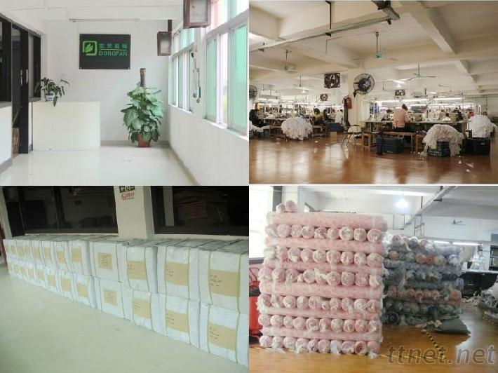 Dongfan Factory photos