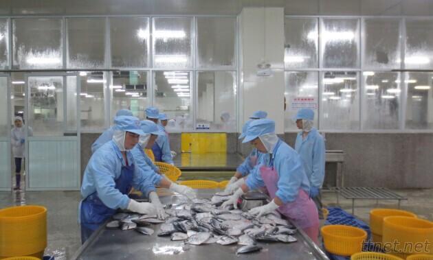China Chengxing Frozenfoods Co., Ltd