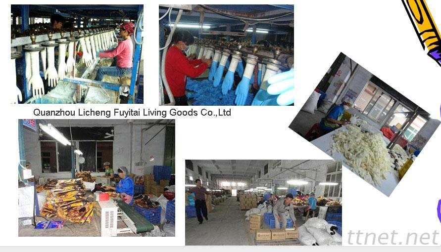 Fuyitai latex nitrile glove factory