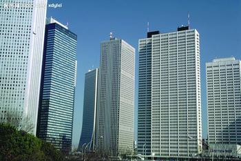 Dongyue International Trade And Economic Co., Ltd