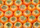 Fresh Fruit Persimmon