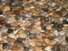 Mixed Color Pebble Stone, River Stone