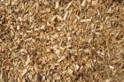 Pedazos de madera