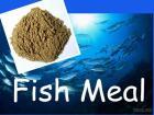 Harina de pescado para la alimentación (proteína el 65% el 72%)