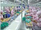 Servizio dell'imballaggio di alimento in depositi doganali
