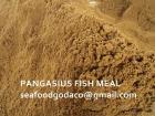 Proteína de la harina de pescado de Pangasius el 60%