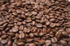 カカオの豆及びコーヒー豆