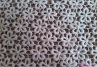Lace Fabric / Cotton Lace / Chemical Lace / Poly Lace