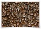 Luwak 진짜 커피/Civet 커피