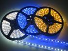 LED 지구 빛
