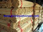 Manija de madera de la escoba