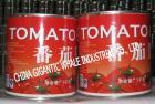 3Kg 2012 작물 토마토 페이스트