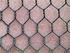 Hexagonal Wire Mesh/Chicken Wire