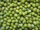 China Green Mung Beans