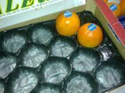 Nahrungsmittelgrad-Verpacken