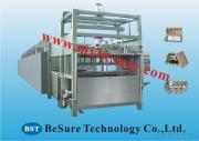 Top Quality Pulp Molding Machine