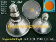 Glass Cup PAR20/PAR30/PAR38/PAR46 COB LED PAR Light, E40/E27 Glass PAR Lamp