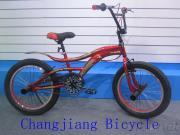 Cheetah 20 Inch Free Style Bmx Bike